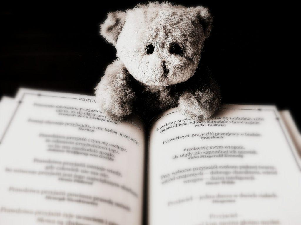A teddy bear on a book