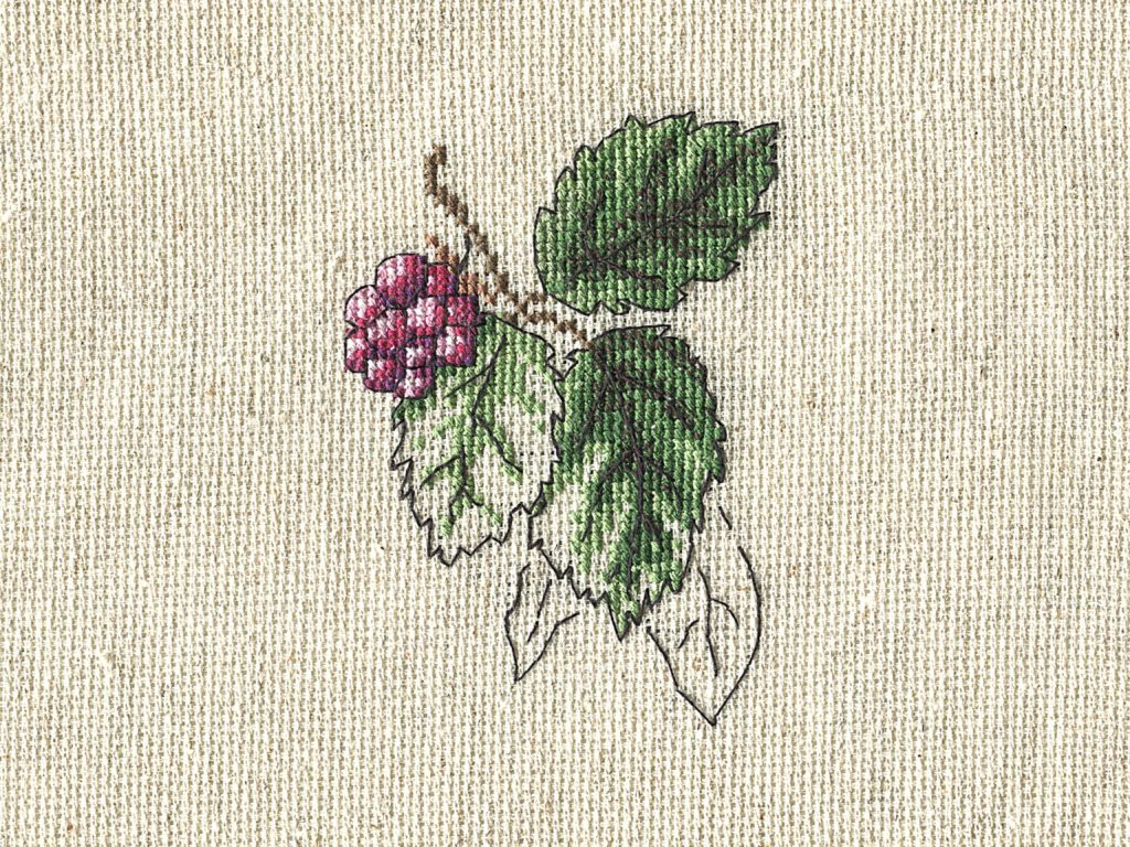 An unfinished cross-stitch project with grapes and leaves