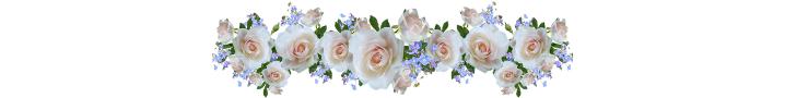 Swag of roses | Scripture memory