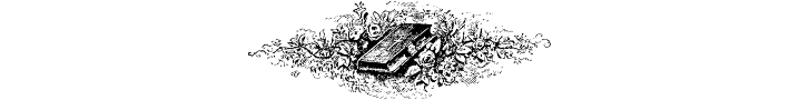 Bible in a clump of flowers