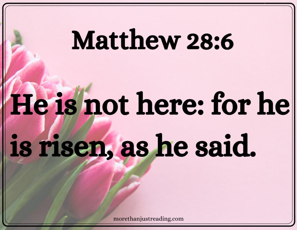 Matthew 28:6 and tulips | Resurrection Day