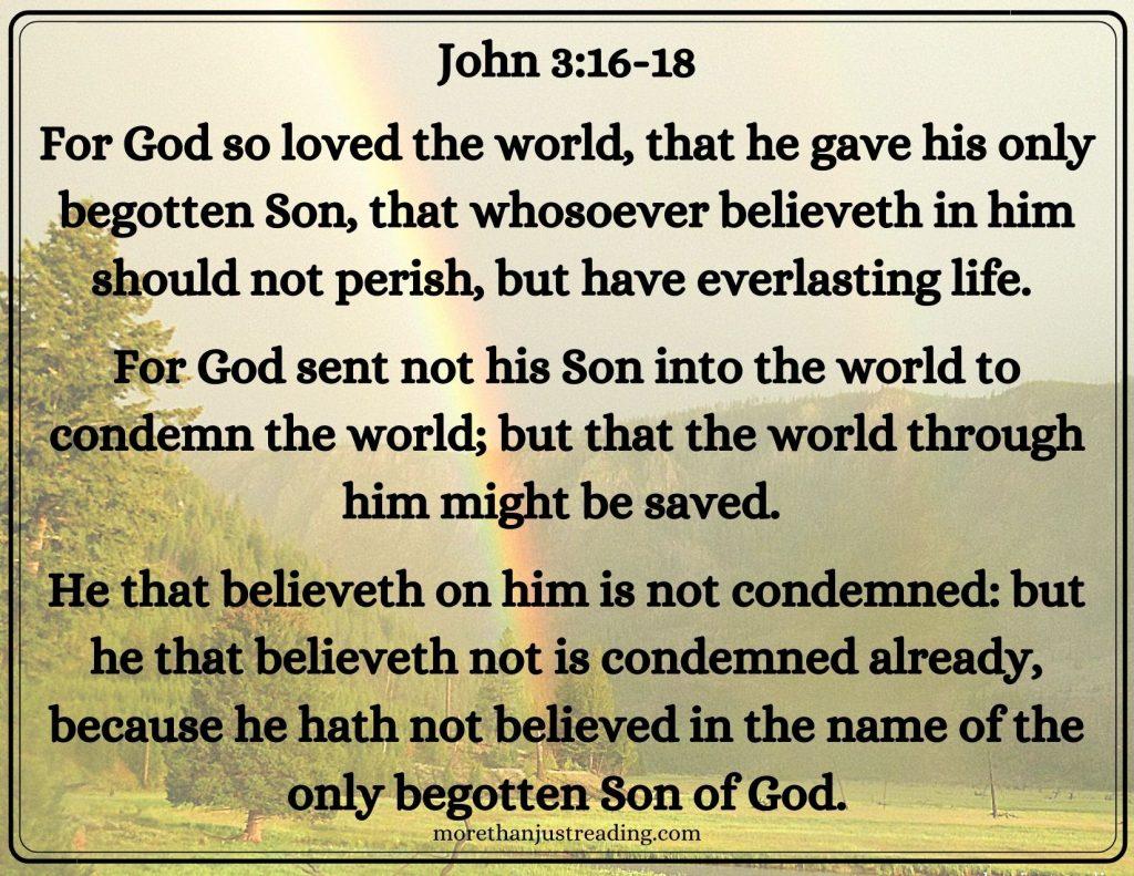John 3:16-18 a rainbow over a forest | eternal God